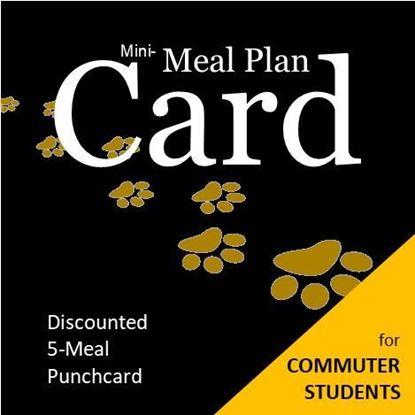 Mini Meal Plan